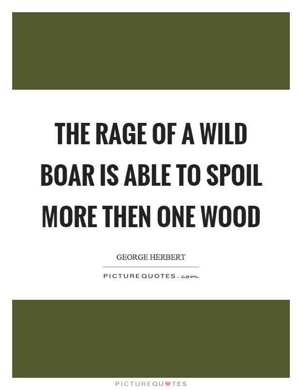 The rage of a wild boar is able to spoil more then one wood Picture Quote #1