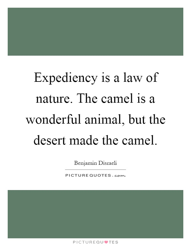 Expediency is a law of nature. The camel is a wonderful animal, but the desert made the camel Picture Quote #1