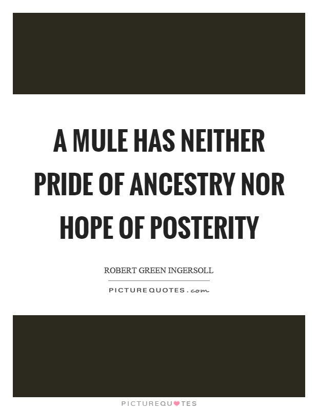 A mule has neither pride of ancestry nor hope of posterity Picture Quote #1
