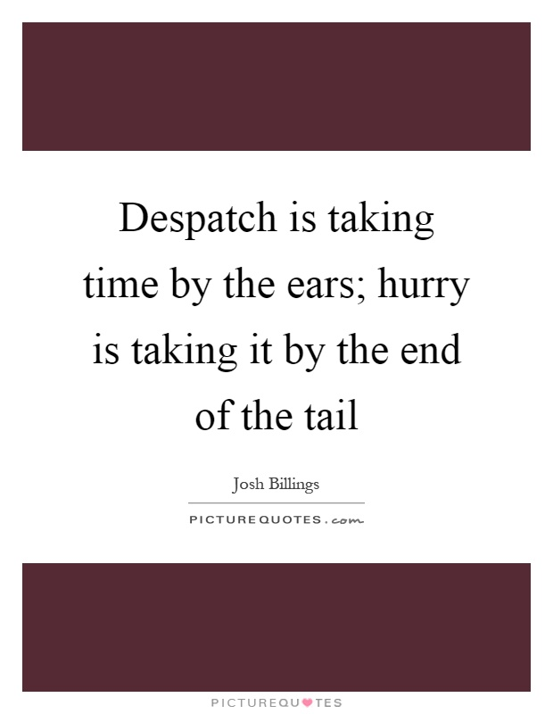 Despatch is taking time by the ears; hurry is taking it by the end of the tail Picture Quote #1