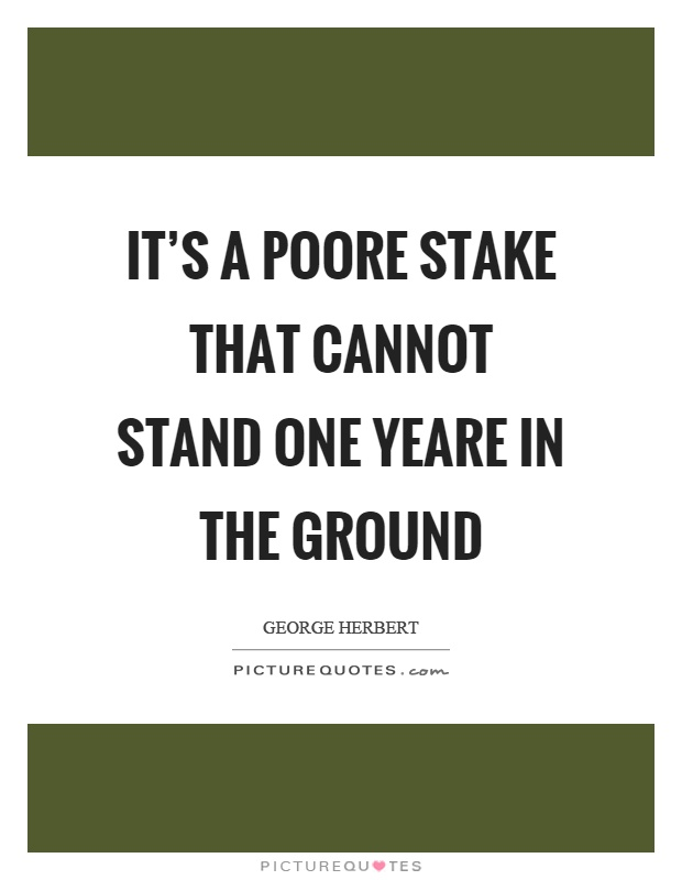 It's a poore stake that cannot stand one yeare in the ground Picture Quote #1