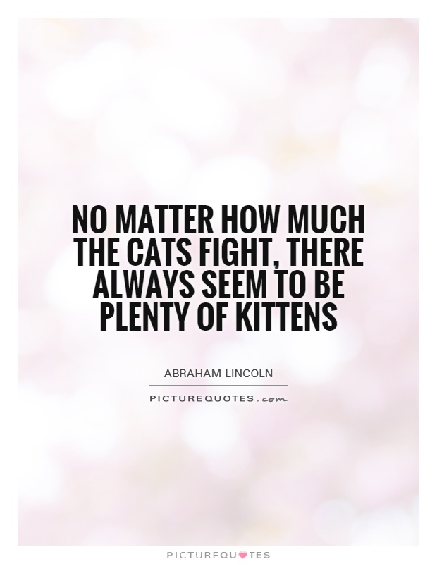 No matter how much the cats fight, there always seem to be plenty of kittens Picture Quote #1