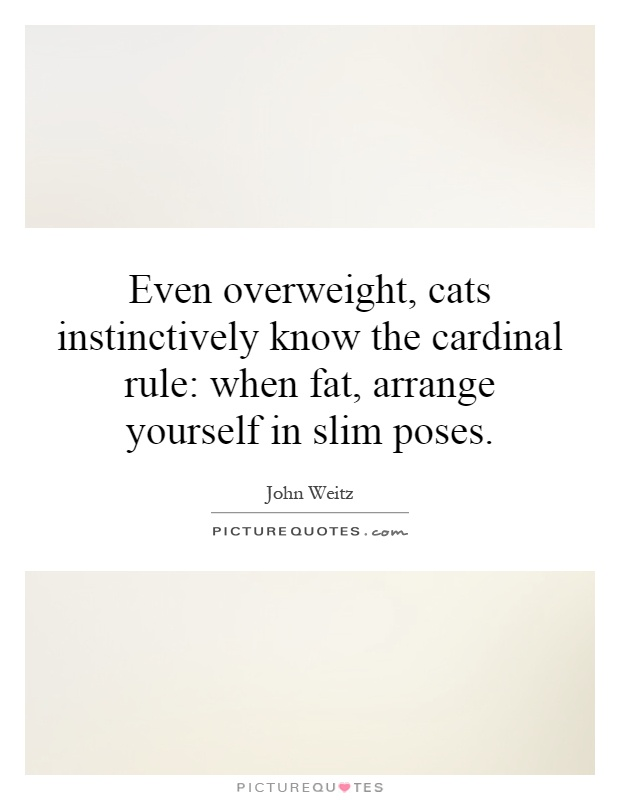 Even overweight, cats instinctively know the cardinal rule: when fat, arrange yourself in slim poses Picture Quote #1