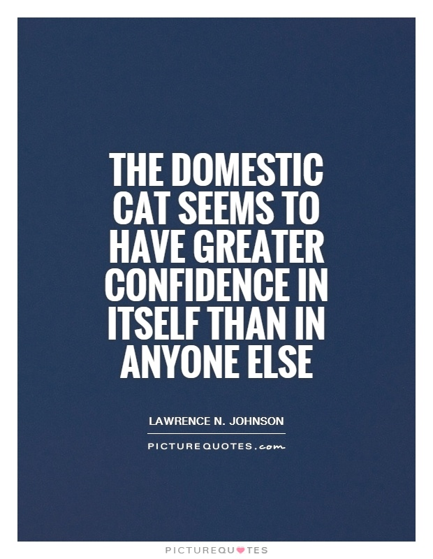 The domestic cat seems to have greater confidence in itself than in anyone else Picture Quote #1