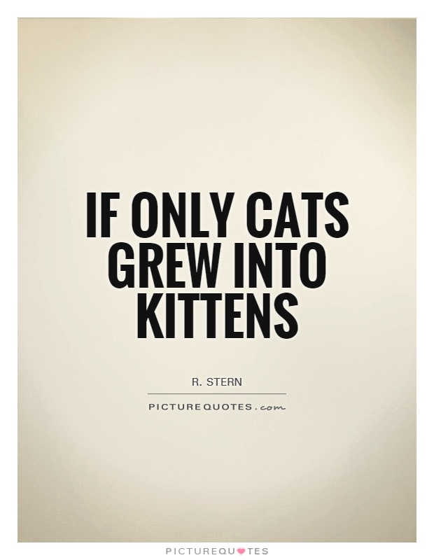 If only cats grew into kittens Picture Quote #1
