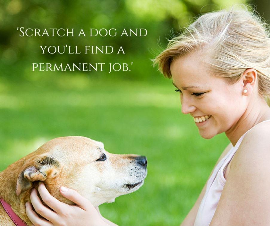 Scratch a dog and you'll find a permanent job Picture Quote #1