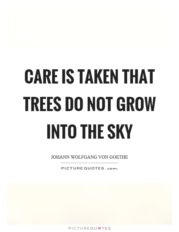 Care is taken that trees do not grow into the sky Picture Quote #1