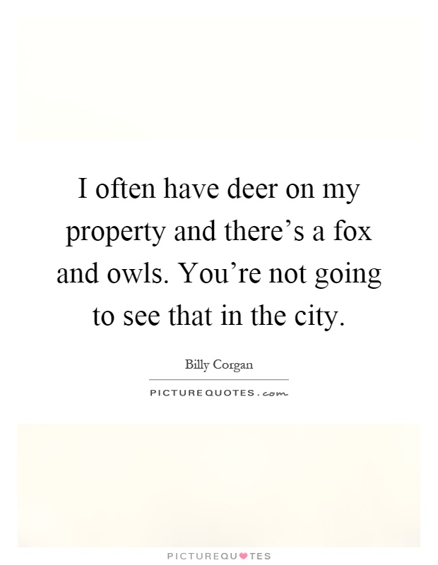 I often have deer on my property and there's a fox and owls. You're not going to see that in the city Picture Quote #1