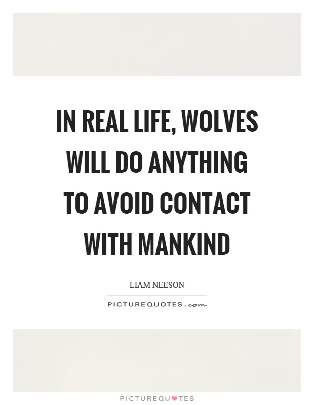 In real life, wolves will do anything to avoid contact with mankind Picture Quote #1