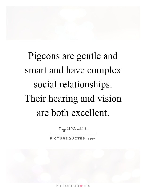 Pigeons are gentle and smart and have complex social relationships. Their hearing and vision are both excellent Picture Quote #1