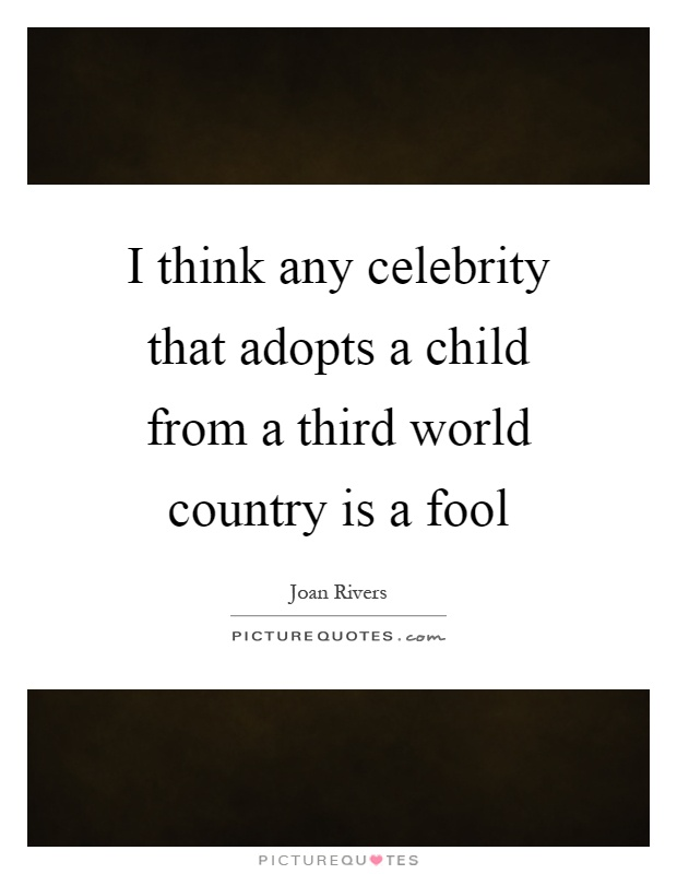I think any celebrity that adopts a child from a third world country is a fool Picture Quote #1