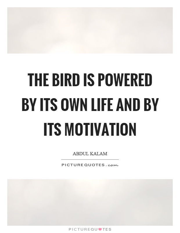 The bird is powered by its own life and by its motivation Picture Quote #1