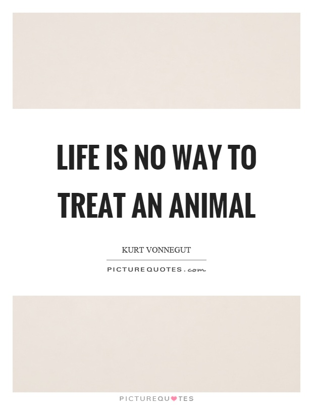 Life is no way to treat an animal Picture Quote #1