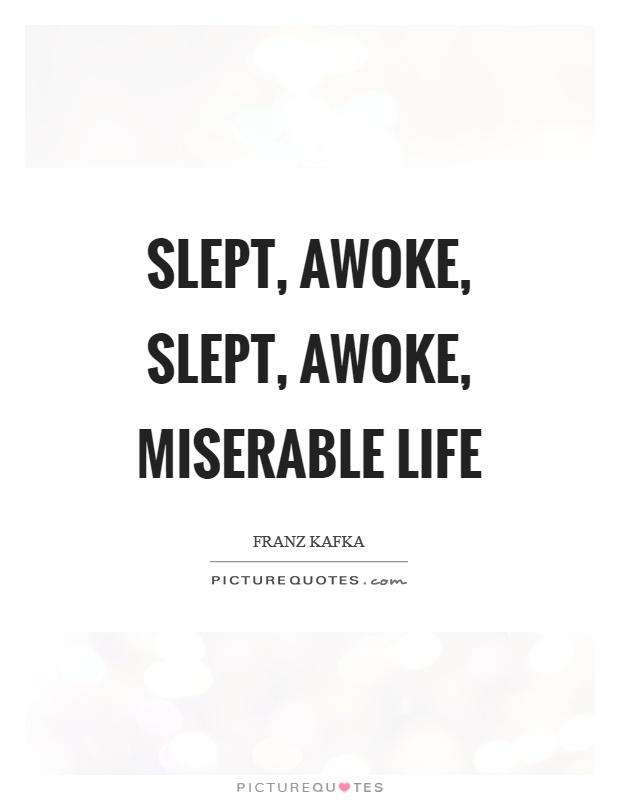 Slept, awoke, slept, awoke, miserable life Picture Quote #1
