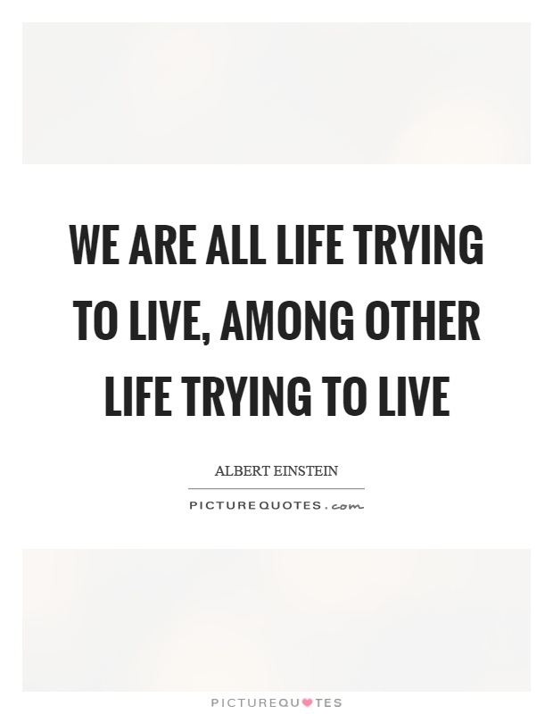 We are all life trying to live, among other life trying to live Picture Quote #1