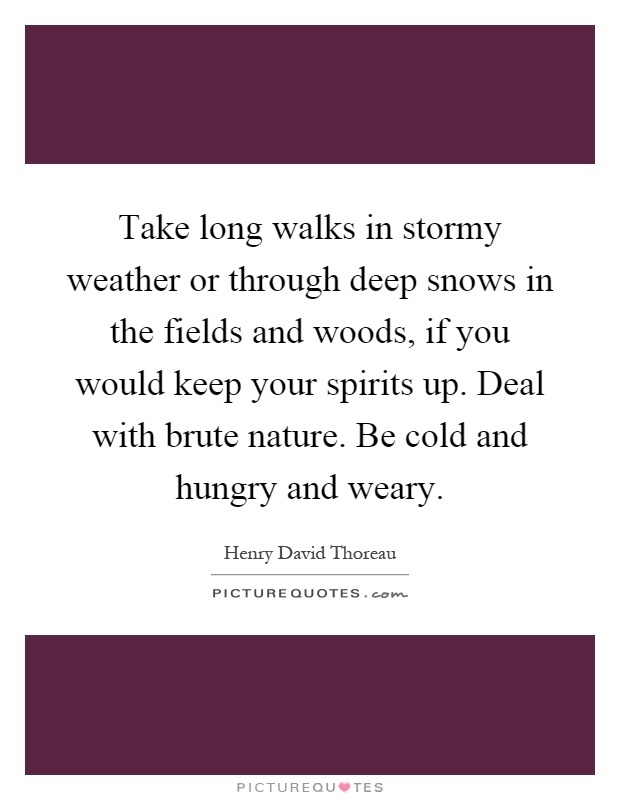 Take long walks in stormy weather or through deep snows in the fields and woods, if you would keep your spirits up. Deal with brute nature. Be cold and hungry and weary Picture Quote #1