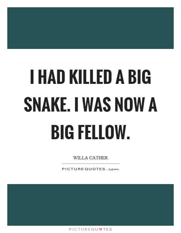 I had killed a big snake. I was now a big fellow Picture Quote #1
