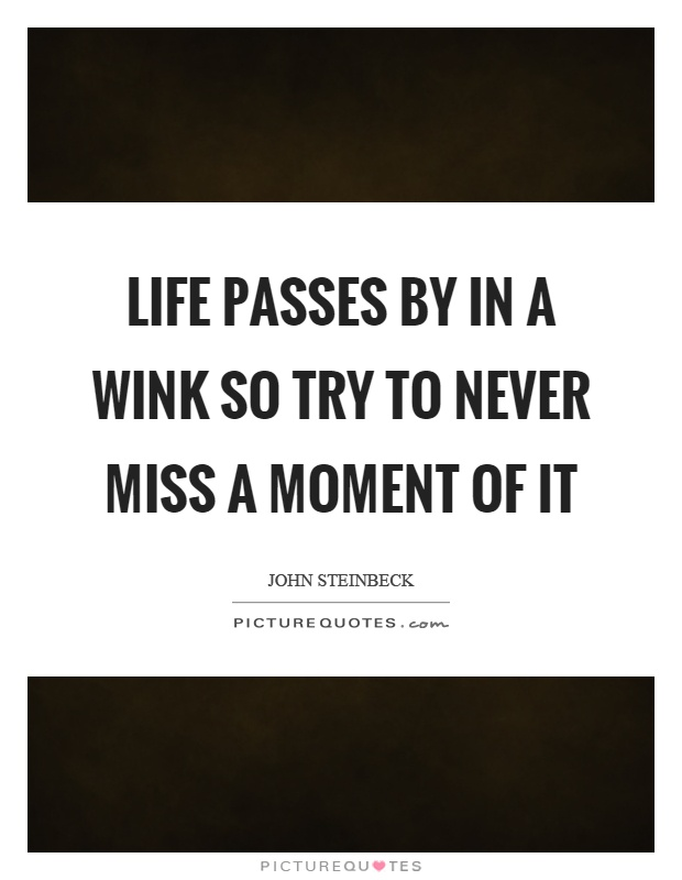 Life passes by in a wink so try to never miss a moment of it Picture Quote #1