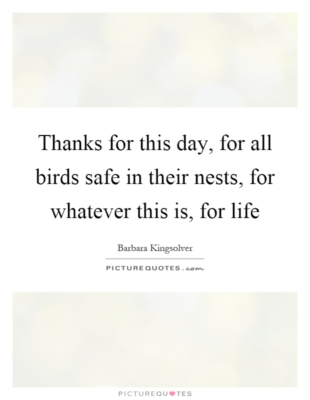 Thanks for this day, for all birds safe in their nests, for whatever this is, for life Picture Quote #1