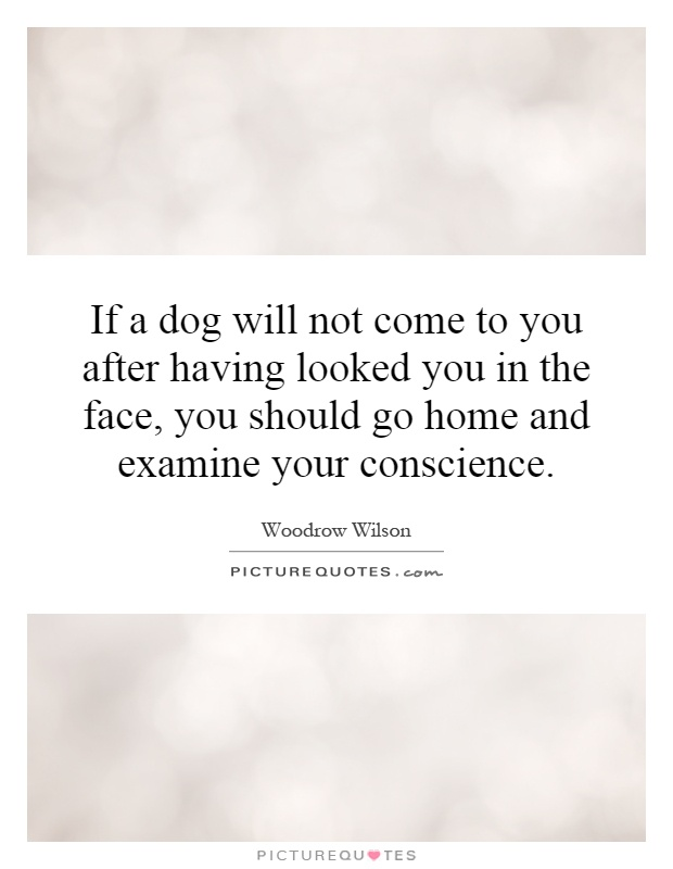 If a dog will not come to you after having looked you in the face, you should go home and examine your conscience Picture Quote #1