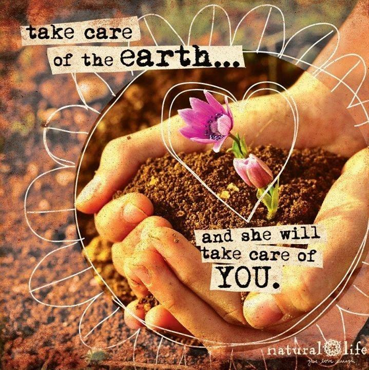 Take care of the Earth and she will take care of you Picture Quote #1
