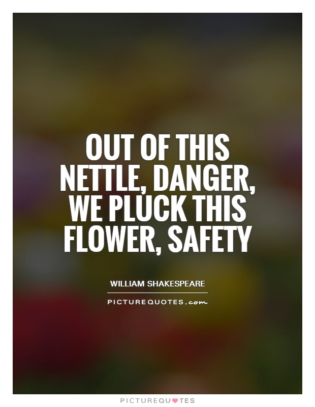 Out of this nettle, danger, we pluck this flower, safety Picture Quote #1