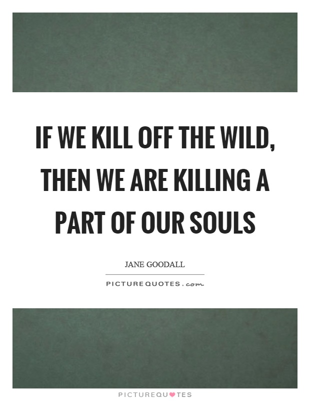 If we kill off the wild, then we are killing a part of our souls Picture Quote #1
