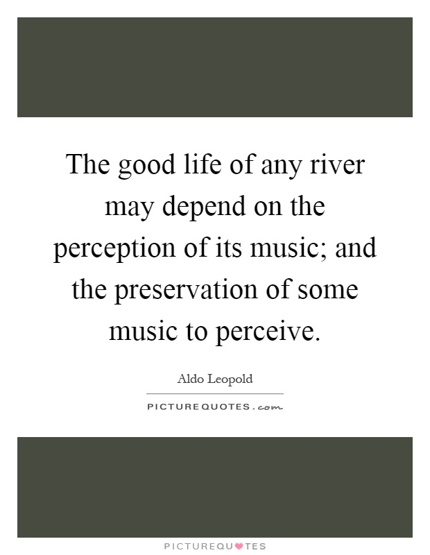 The good life of any river may depend on the perception of its music; and the preservation of some music to perceive Picture Quote #1