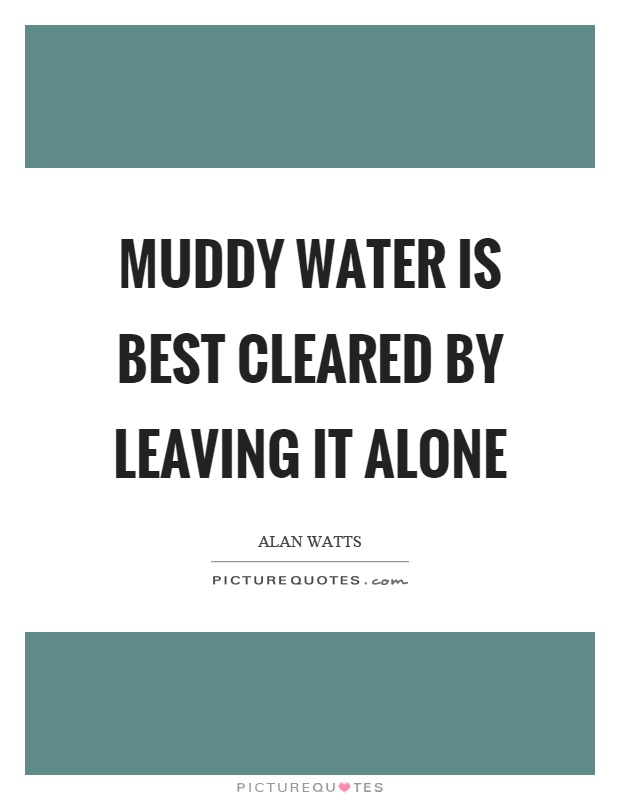 Muddy water is best cleared by leaving it alone Picture Quote #1