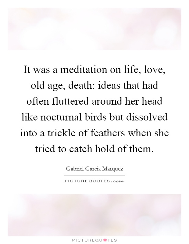 It was a meditation on life, love, old age, death: ideas that had often fluttered around her head like nocturnal birds but dissolved into a trickle of feathers when she tried to catch hold of them Picture Quote #1