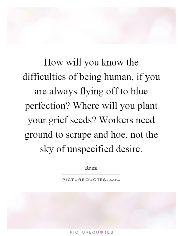 How will you know the difficulties of being human, if you are always flying off to blue perfection? Where will you plant your grief seeds? Workers need ground to scrape and hoe, not the sky of unspecified desire Picture Quote #1