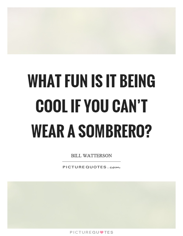 What fun is it being cool if you can't wear a sombrero? Picture Quote #1