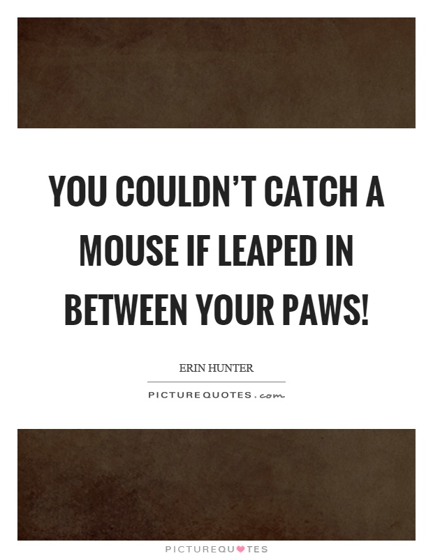 You couldn't catch a mouse if leaped in between your paws! Picture Quote #1