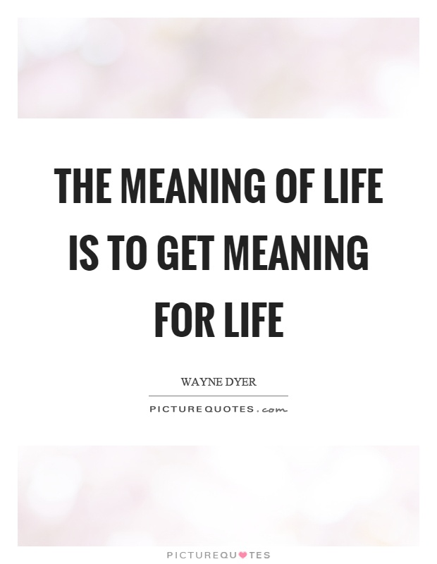 The meaning of life is to get meaning for life Picture Quote #1
