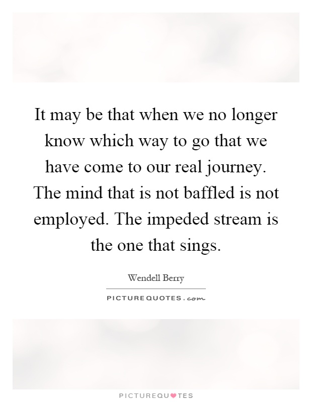 It may be that when we no longer know which way to go that we have come to our real journey. The mind that is not baffled is not employed. The impeded stream is the one that sings Picture Quote #1