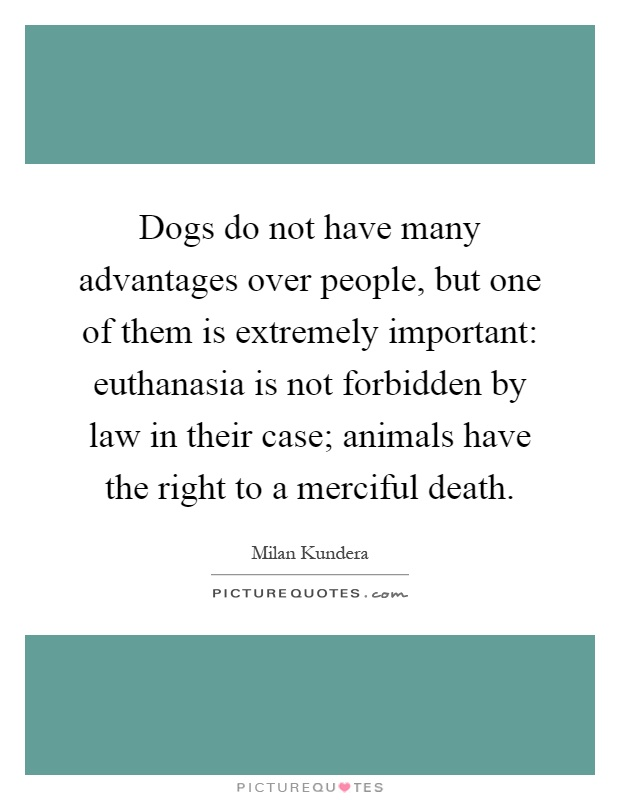 Dogs do not have many advantages over people, but one of them is extremely important: euthanasia is not forbidden by law in their case; animals have the right to a merciful death Picture Quote #1