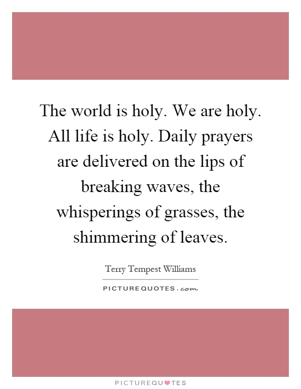 The world is holy. We are holy. All life is holy. Daily prayers are delivered on the lips of breaking waves, the whisperings of grasses, the shimmering of leaves Picture Quote #1