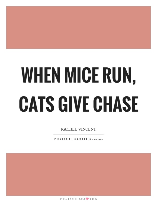 When mice run, cats give chase Picture Quote #1