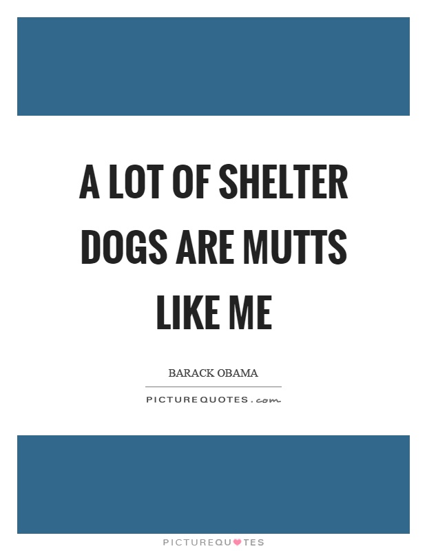 A lot of shelter dogs are mutts like me Picture Quote #1