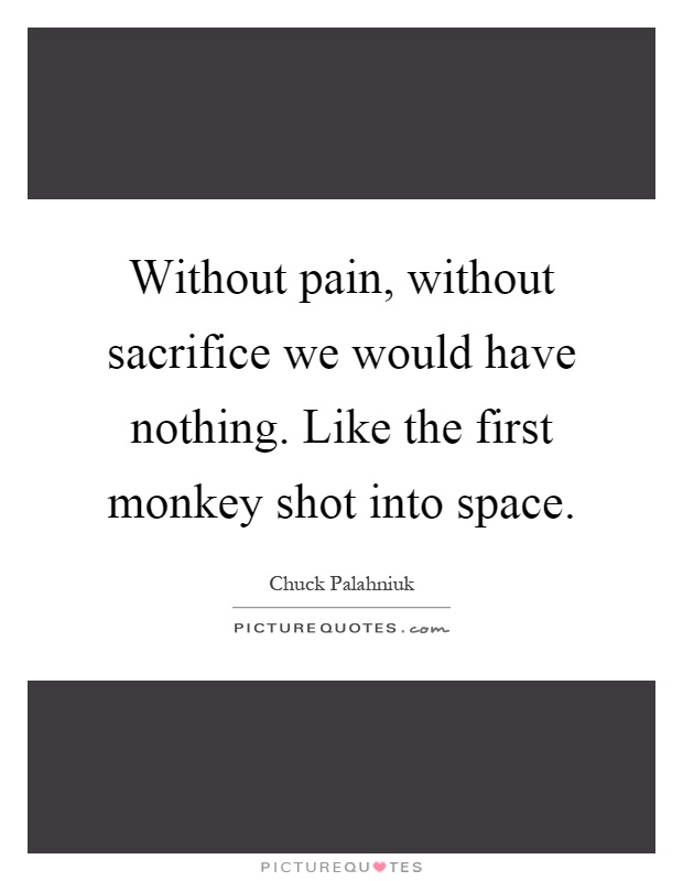 Without pain, without sacrifice we would have nothing. Like the first monkey shot into space Picture Quote #1