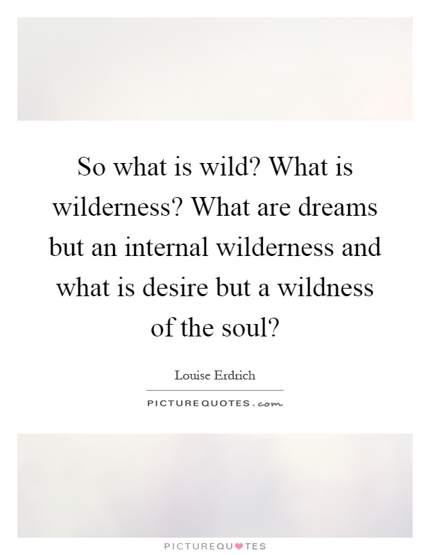So what is wild? What is wilderness? What are dreams but an internal wilderness and what is desire but a wildness of the soul? Picture Quote #1