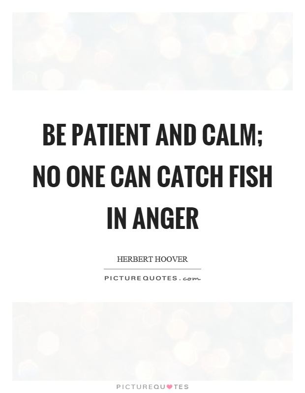 Be patient and calm; no one can catch fish in anger Picture Quote #1
