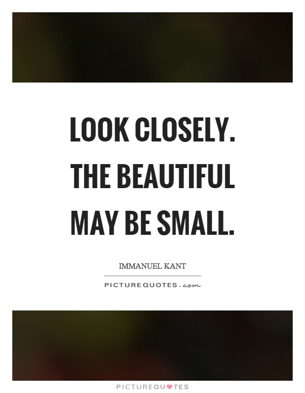 Look Closely The Beautiful May Be Small Picture Quotes Magnificent Beautiful Small Quotes