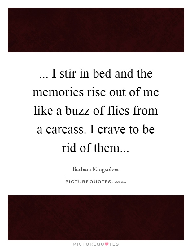 ... I stir in bed and the memories rise out of me like a buzz of flies from a carcass. I crave to be rid of them Picture Quote #1