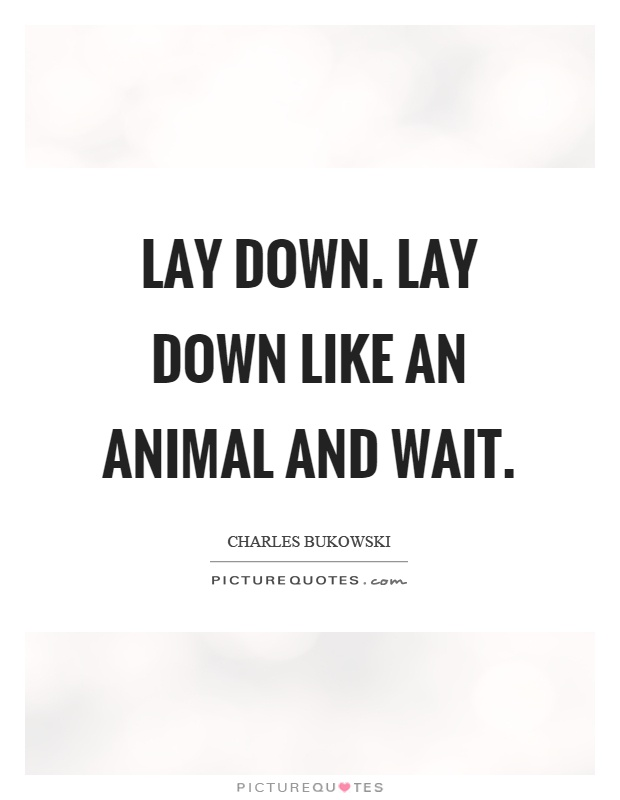 Lay down. lay down like an animal and wait Picture Quote #1