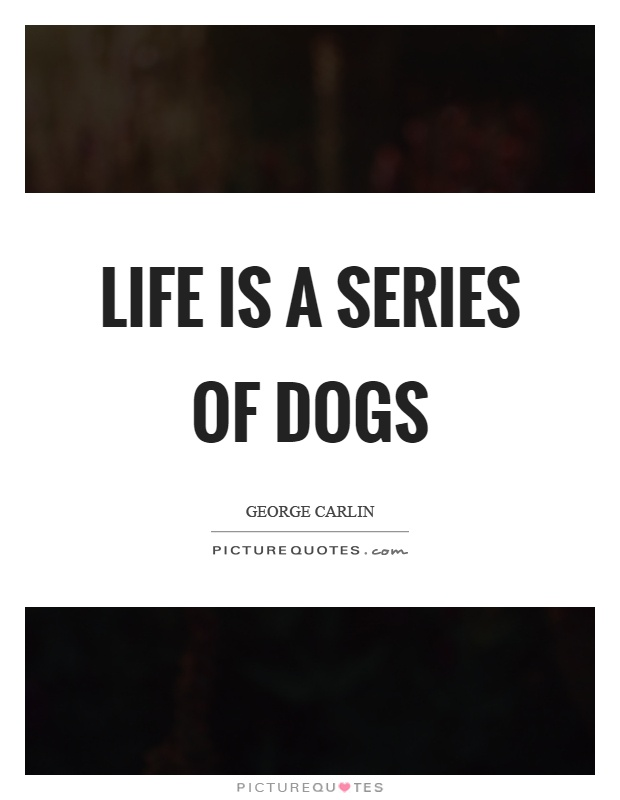 George Carlin Quotes Amp Sayings 355 Quotations