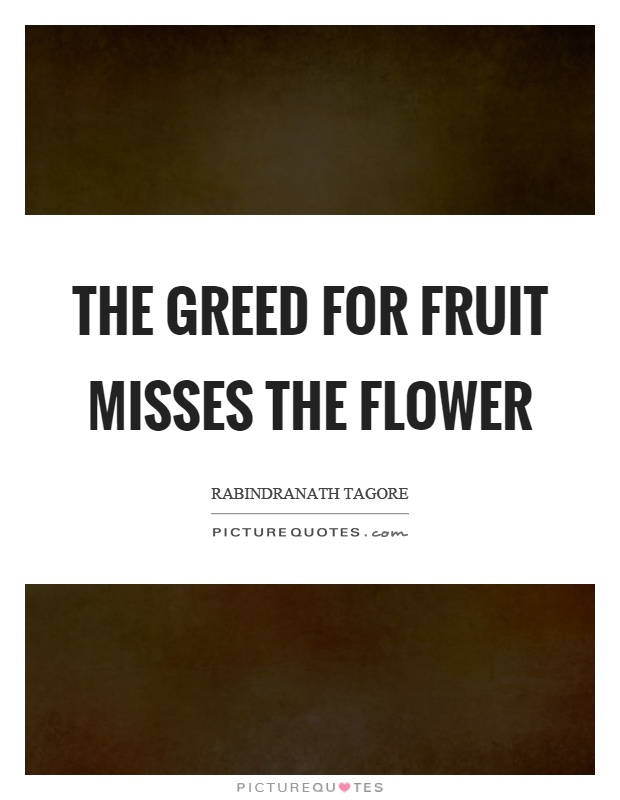 The greed for fruit misses the flower Picture Quote #1