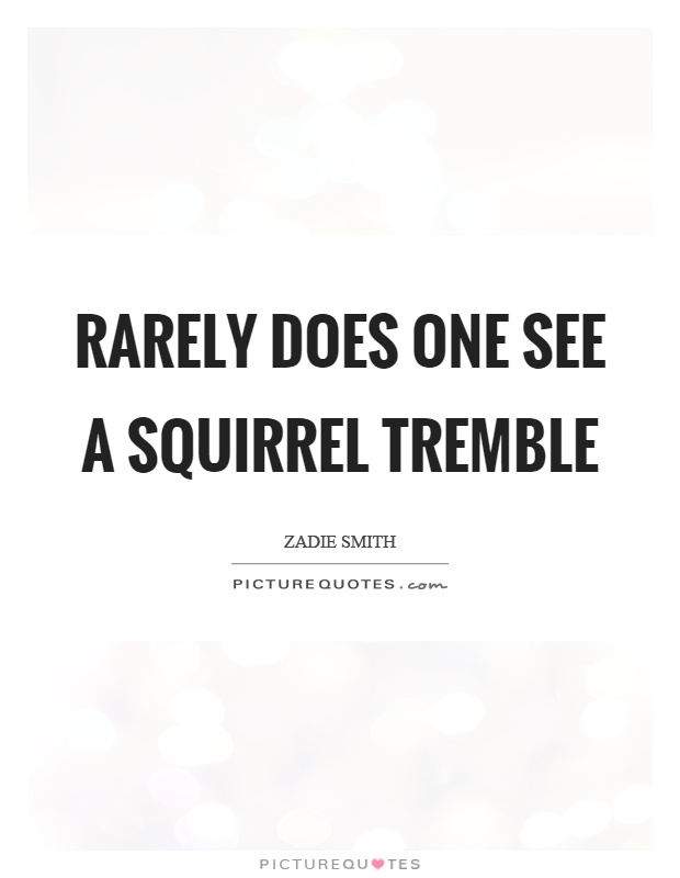Rarely does one see a squirrel tremble Picture Quote #1