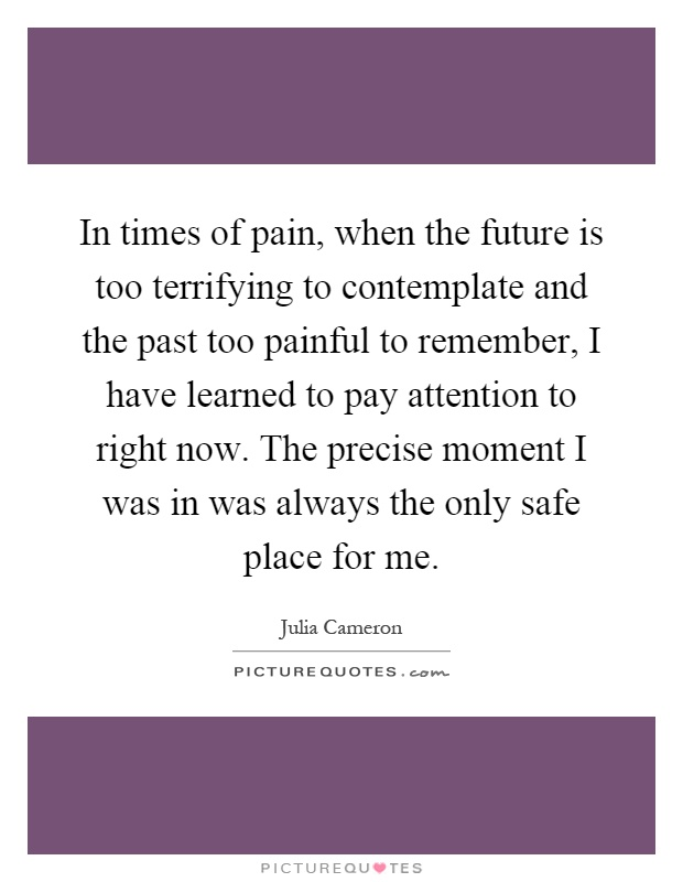 In times of pain, when the future is too terrifying to contemplate and the past too painful to remember, I have learned to pay attention to right now. The precise moment I was in was always the only safe place for me Picture Quote #1
