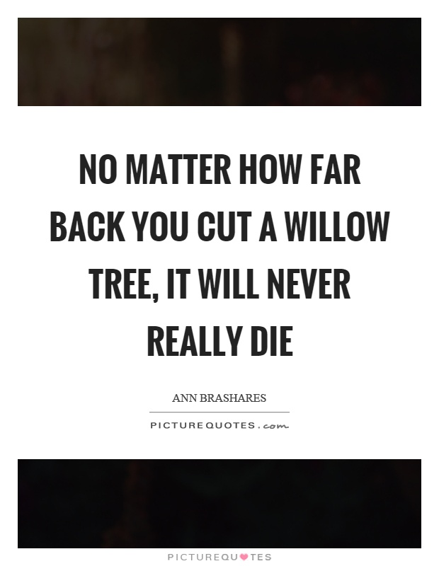 No matter how far back you cut a willow tree, it will never really die Picture Quote #1